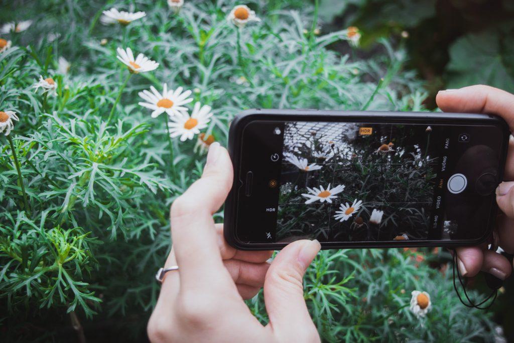 Come comunicare un negozio di fiori sui social